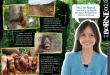 9_Borneo1000h